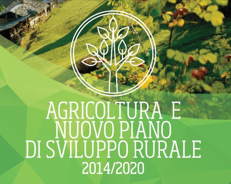 Nuovo programma di sviluppo rurale luned presentazione a for 1 piano piano di storia